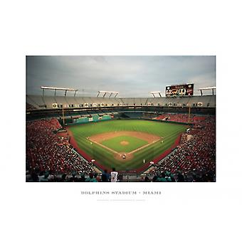 Dolphins Stadium Miami Poster Print by Ira Rosen (19 x 13)