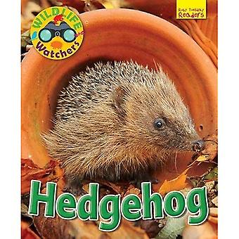 Wildlife Watchers: Hedgehog:� 2017 (Ruby Tuesday Readers)