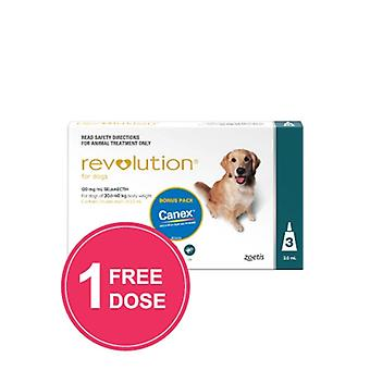Revolution Teal 3 Pack Plus Canex