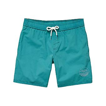 ONeill Veridian Green Surfs Out Kids Boardshorts