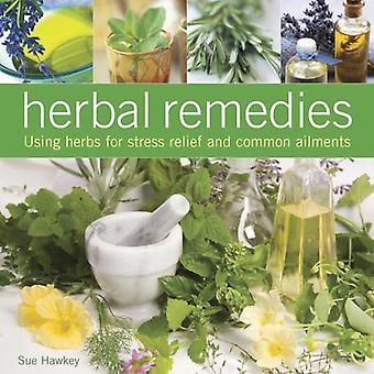 Herbal Remedies: Using Herbs for Stress Relief and Common Ailments