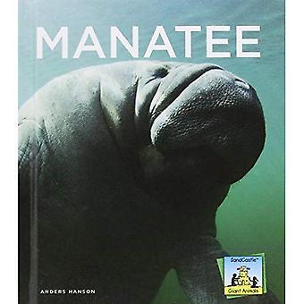 Manatee (Sandcastle: Giant Animals)