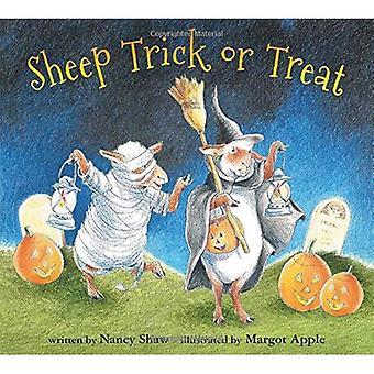 Sheep Trick or Treat (Board Book)