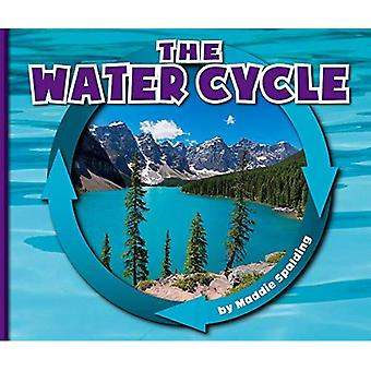 The Water Cycle (Nature Cycles)