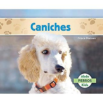 Caniches (Poodles ) (Perros� (Dogs Set 2))