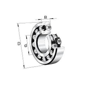 Nsk 2207Kj Double Row Self Aligning Ball Bearing