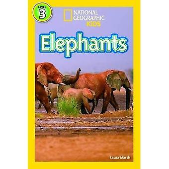 Elefanten (National Geographic Kids Leser (Stufe 3))