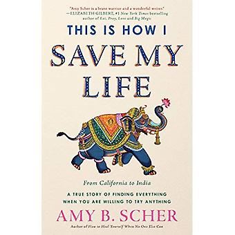 Voilà comment j'ai sauver ma vie: de la Californie à l'Inde, une histoire vraie de trouver tout ce que lorsque vous êtes prêt à essayer n'importe quoi