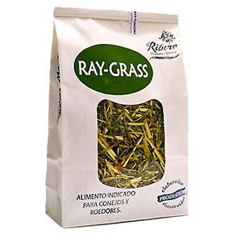 Ribero Ray Grass for Rabbits and Rodents