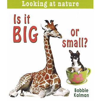 Is it Big or Small? by Bobbie Kalman - 9780778733362 Book