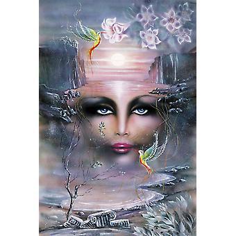Poster - Studio B - 24x36 La Vision Wall Art CJ1486B
