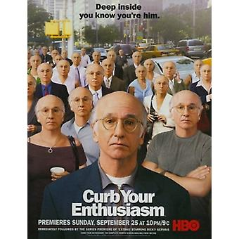 Curb Your Enthusiasm Movie Poster (11 x 17)