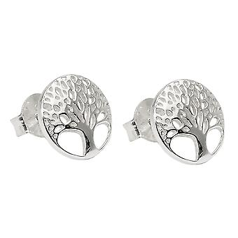 Earrings studs tree of live silver 925