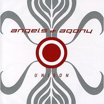 Engel & Qual - unisono [CD] USA import