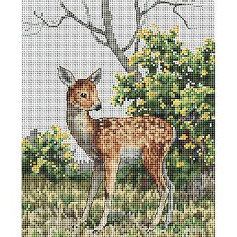 The Natural World Counted Cross Stitch Kit 7.5