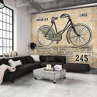 Wallpaper - Old School Bicycle