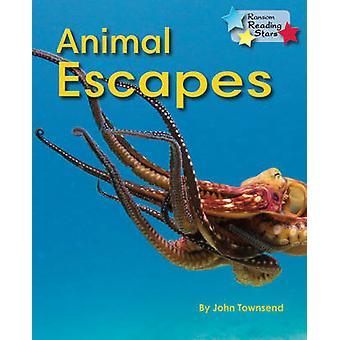 Animal Escapes - 9781781278437 Book