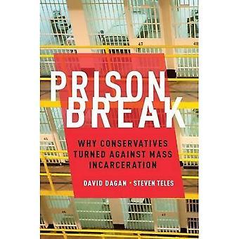Prison Break: Warum wandte sich konservative gegen Masse Inhaftierung (Studies in Post Krieg amerikanische politische Entwicklung)