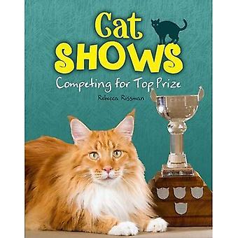 Utstilling: Konkurrerer om toppremien (katter regelen!)