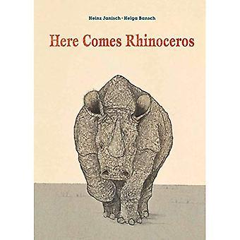 Here Comes Rhinoceros