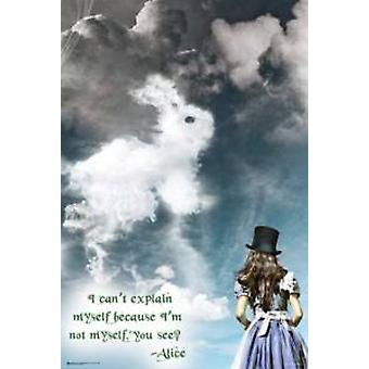 Alice In Wonderland Illusions Poster Poster Print