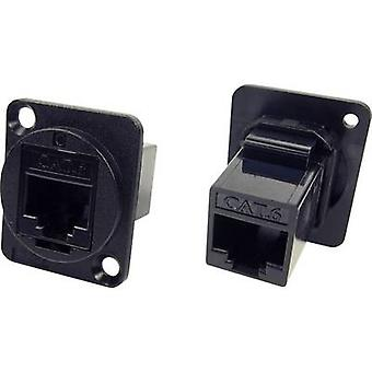 Adapter, build-in CP30222 Cliff Content: 1 pc(s)