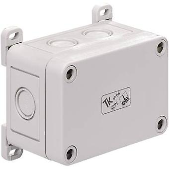 Spelsberg 19400101 TK TK ABP TK Outer Fixing Lug Compatible with (details) TK Plastic casing