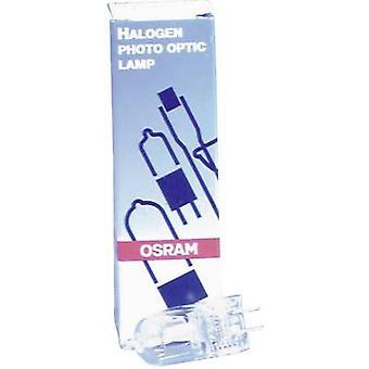Halogen OSRAM 64514 120 V GY6.35 300 W