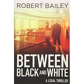 Between Black and White (McMurtrie and Drake Legal Thrillers 2)