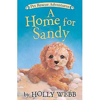 A Home for Sandy (Pet Rescue Adventures)
