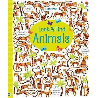 Wygląd i znaleźć zwierząt przez Kirsteen Robson - 9781474941587 książki