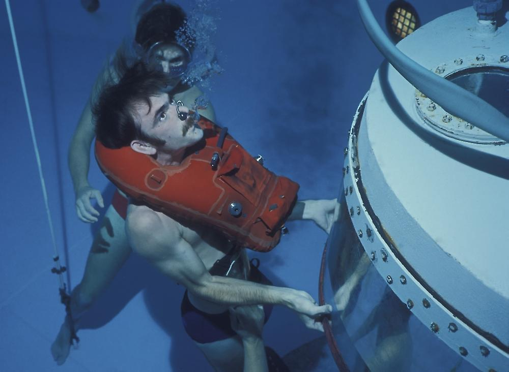 facing life the diving bell and