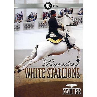 Natur - import legendären weißen Hengste [DVD] USA
