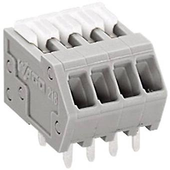WAGO Spring-loaded terminal 0.50 mm² Number of pins 4 Grey 1 pc(s)