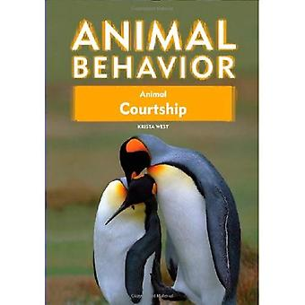 Animal parade nuptiale (comportement Animal)