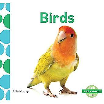 Oiseaux (j'aime les animaux!)