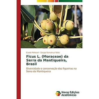 Ficus L. Moraceae da Serra da Mantiqueira Brasil by Pelissari Gisela