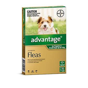 Advantage Green 6 Pack Small Dogs 0-4kg