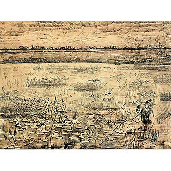 Vincent Van Gogh - A Marsh with Water Lillies, 1881 Poster Print Giclee