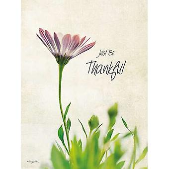 Just be Thankful Poster Print by Robin-Lee Vieira (12 x 16)