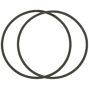 Pentair Sta-Rite C20-79 Gasket for AJ Series Pool and Spa Pump