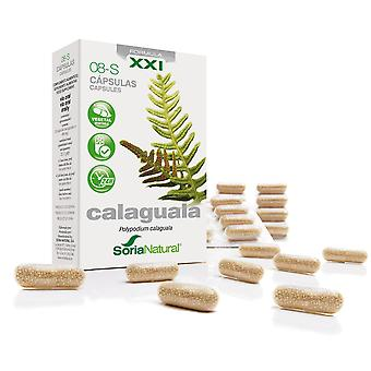 Soria Natural Capsules 8-S Narrow Strapfern