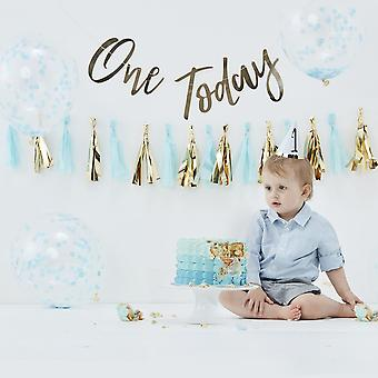 1st Birthday Blue CAKE SMASH KIT Balloons Back Drop Hat Garland First Birthday