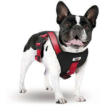 Xt-Dog Arnes extreme Xxs (Dogs , Collars, Leads and Harnesses , Harnesses)