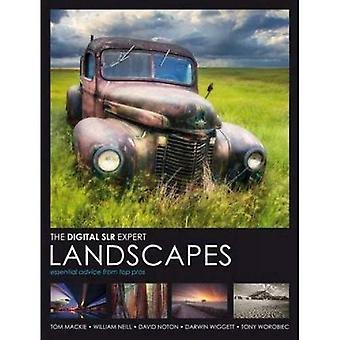 Digital SLR Expert: Landscapes