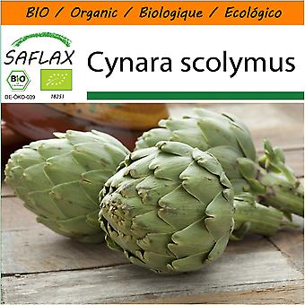 Saflax - Garden in the Bag - 5 seeds - Organic - Artichoke - Imperial Star - BIO - Artichaut - Imperial star - BIO - Carciofo - Imperial Star - Ecológico - Alcachofa - Estrella Imperial - Artischocke - Imperial Star