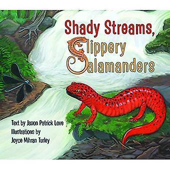 Shady Streams, Slippery Salamanders