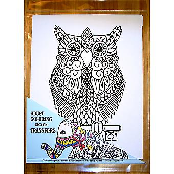Owl Coloring Transfer-9