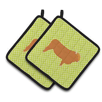 Каролинских сокровища BB7646PTHD Highland корова зеленый пара прихватки