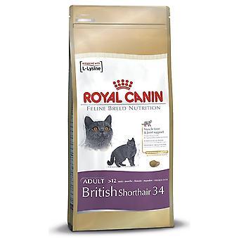Royal Canin w wersji kot żywność Brytyjski Stenografia suche wymieszać 10 kg